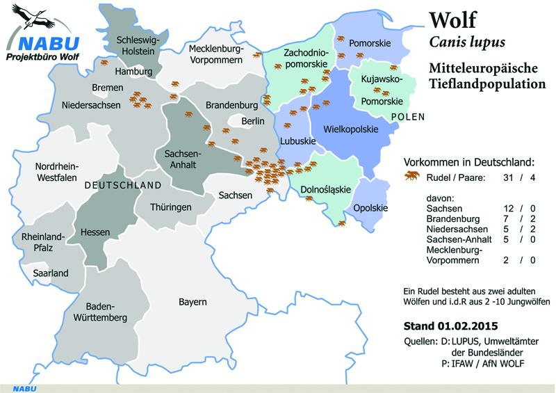 Wölfe in Mitteleuropa